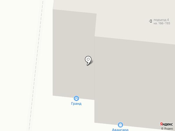 Дракон на карте Тюмени