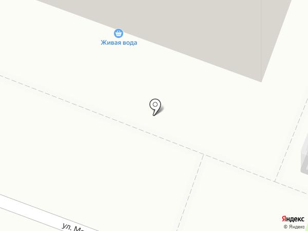 Алиса на карте Тюмени