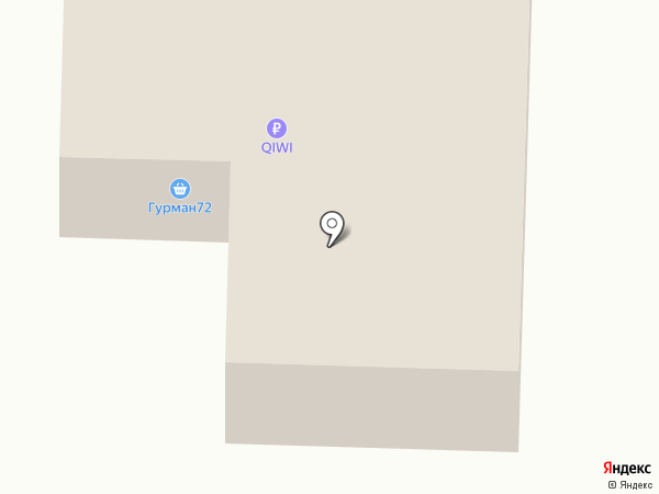 Qiwi на карте Патрушевой