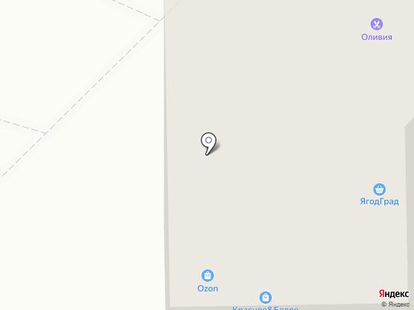 Оливия на карте Тюмени