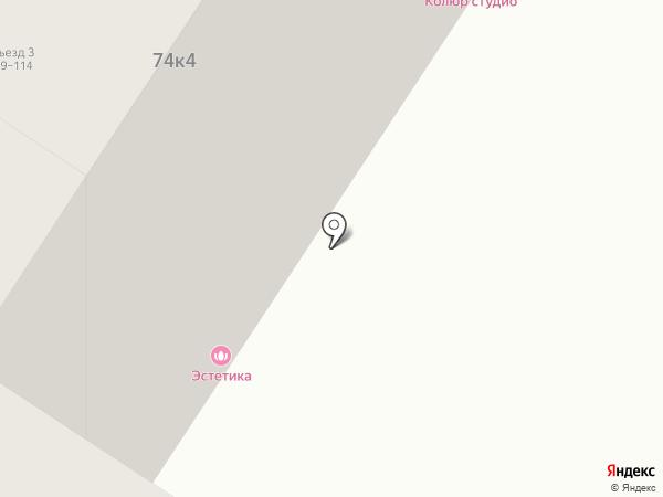 Белая орхидея на карте Тюмени