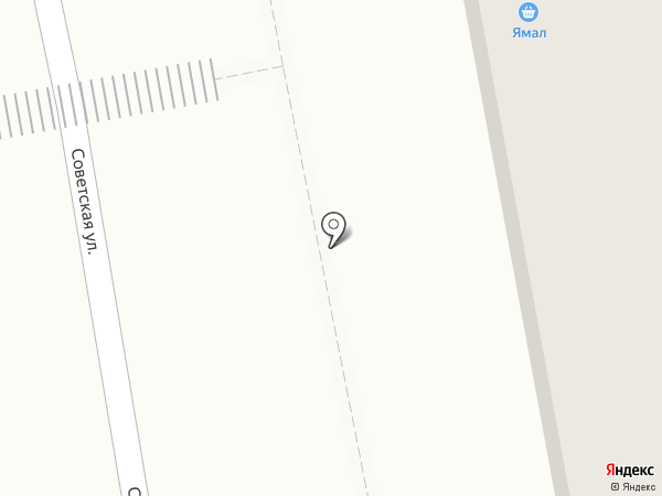 Ямал на карте Боровского