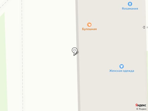 Комиссионычъ на карте Тобольска
