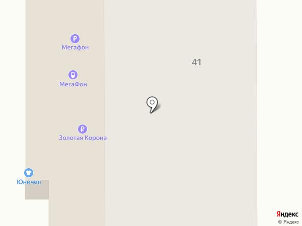 Барс на карте Тобольска