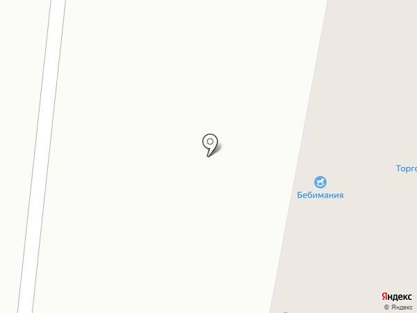 Лиза на карте Караганды