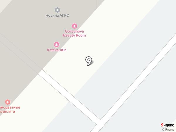 mяta на карте Омска