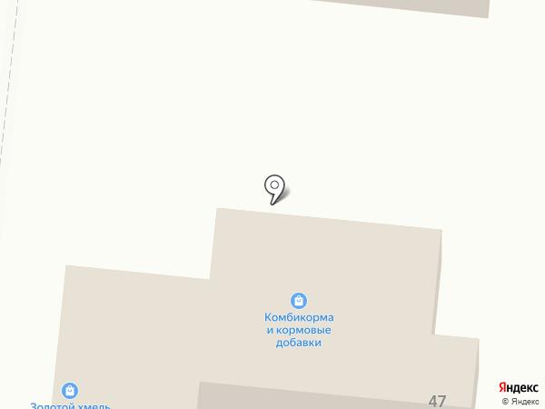 Золотой хмель на карте Омска