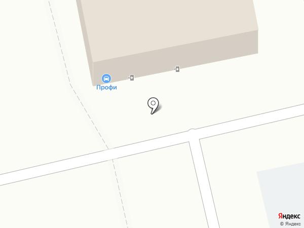 Профи на карте Омска