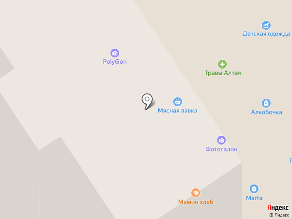 Зубрицкая Н.Н. на карте Омска
