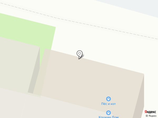 Кошкин дом на карте Сургута