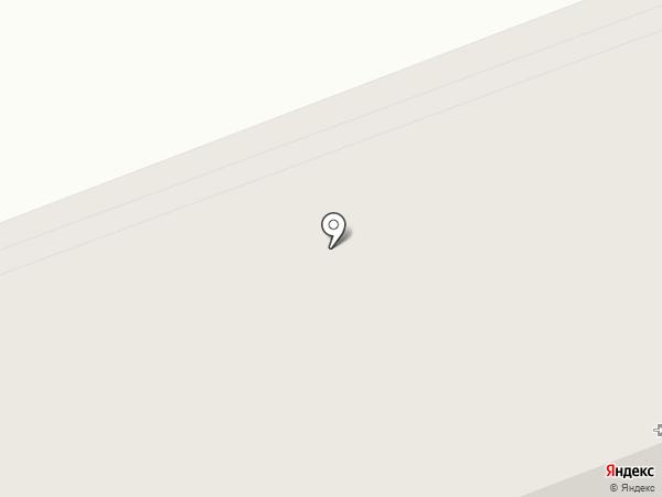 Красивые гости на карте Сургута