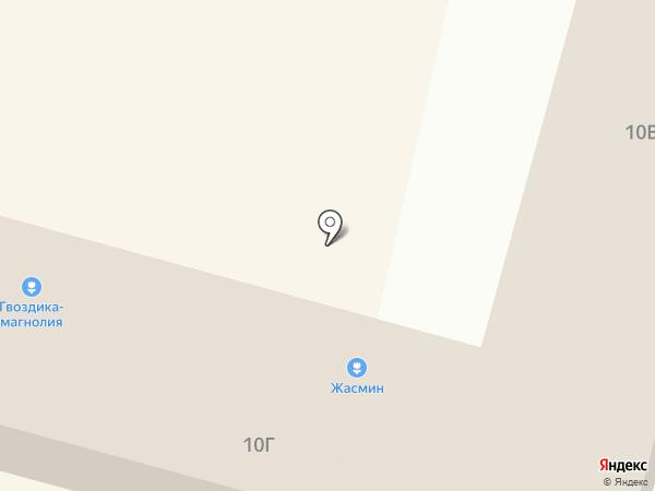 Гвоздика на карте Сургута