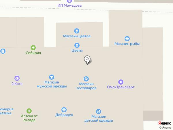 Райчик на карте Омска