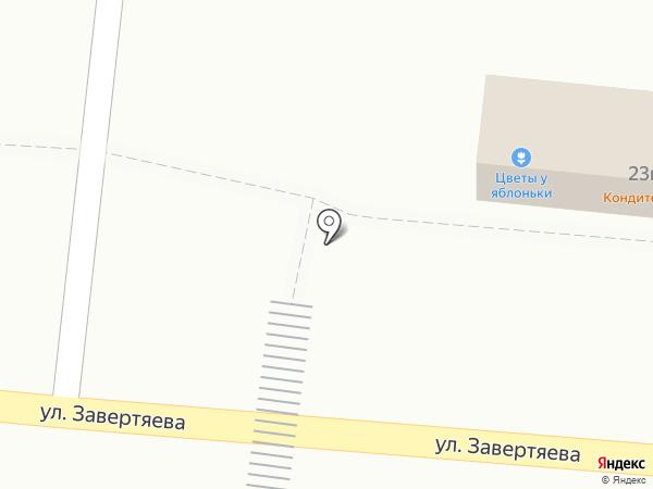 Цветы у Яблоньки. PLUS на карте Омска