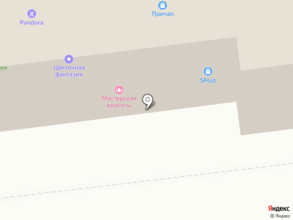 Pandora на карте Ноябрьска