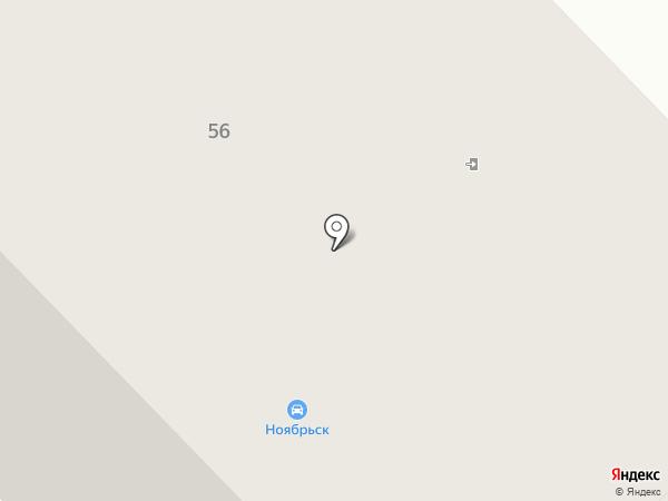 Трюфель на карте Ноябрьска
