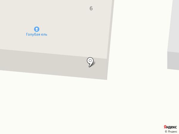 Голубая ель на карте Оби