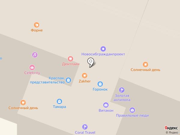 Астэри на карте Новосибирска