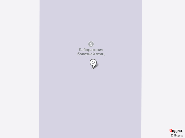 СмсБизнес на карте Краснообска