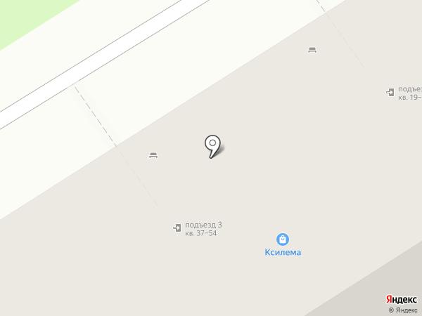 Ксилема на карте Бердска