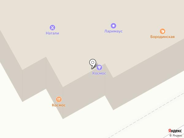 Бородинская на карте Бердска