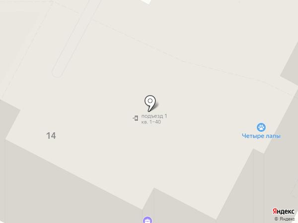 Четыре лапы на карте Бердска