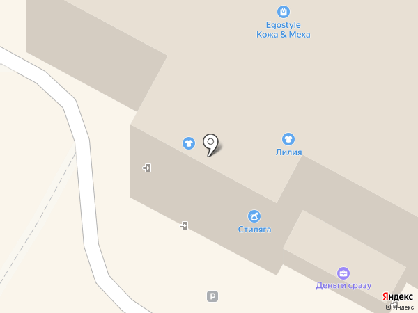 Лигра на карте Бердска