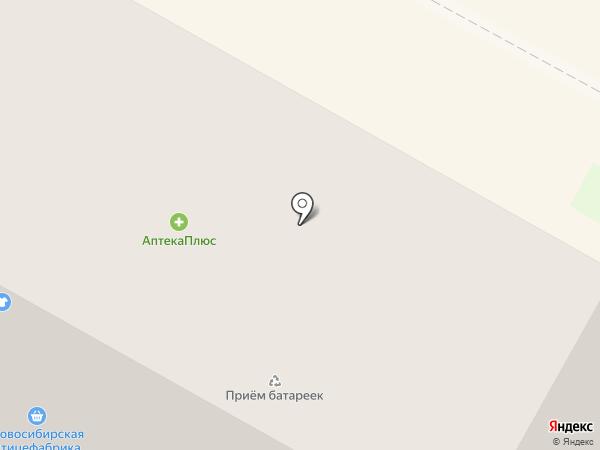 Электронный город на карте Бердска