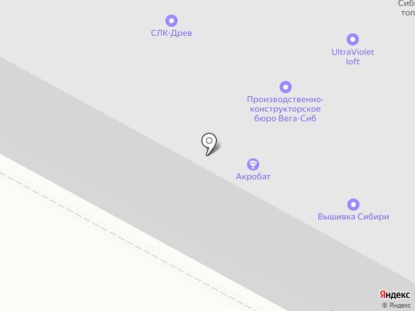 Кабанчик на карте Бердска