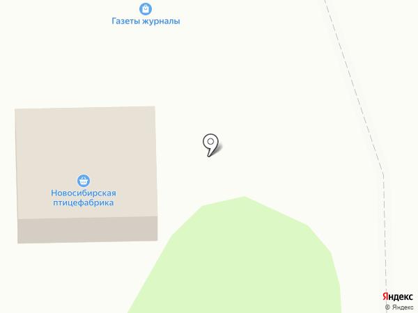 Новосибирская птицефабрика на карте Искитима