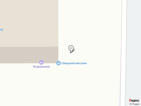 Магазин бытовой химии и косметики на карте Искитима