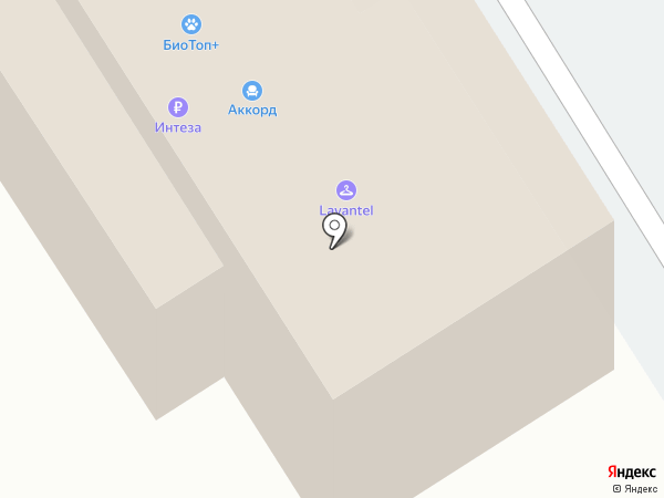 LOST на карте Барнаула