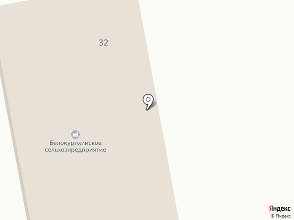 Белокурихинское сельхозпредприятие, ЗАО на карте Новотырышкино