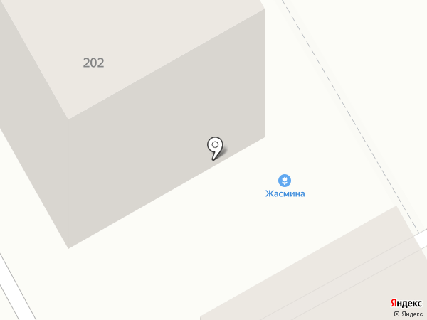 Жасмина на карте Томска