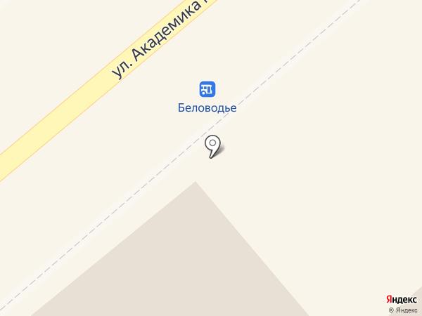 Беловодье на карте Белокурихи