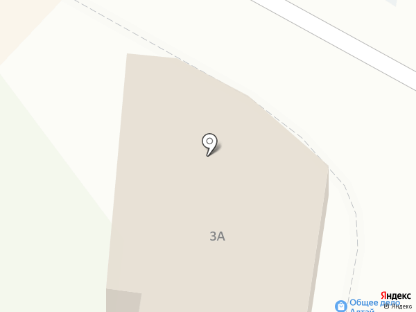 Билайн на карте Белокурихи