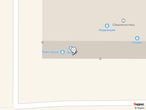 Nirvel на карте Томска
