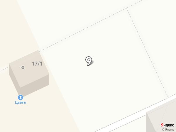Камелия на карте Томска