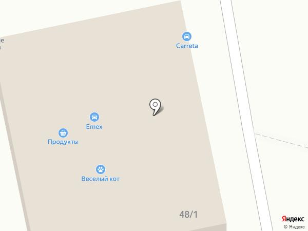 Ряба на карте Бийска