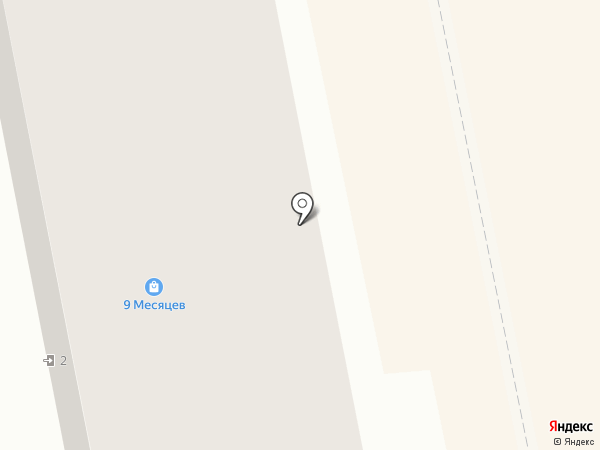 9 месяцев на карте Бийска