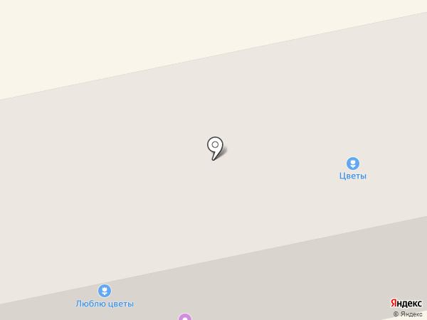 Пивная лига на карте Бийска