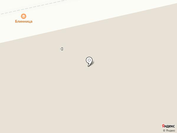 Барс на карте Бийска