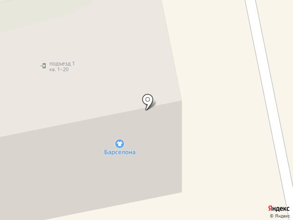 Центр на карте Бийска