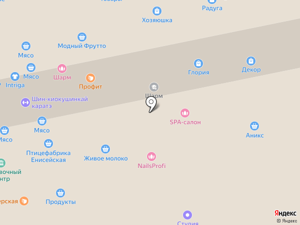 Доставкинъ на карте Бийска