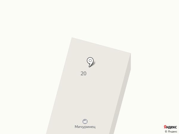 Мичуринец, ЗАО на карте Алтайского