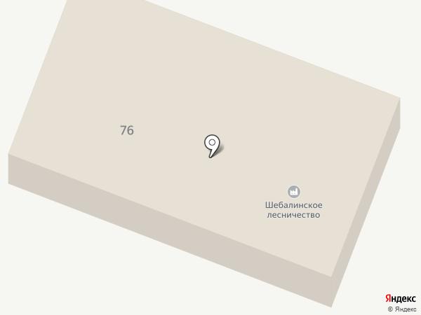 Шебалинское лесничество на карте Шебалино
