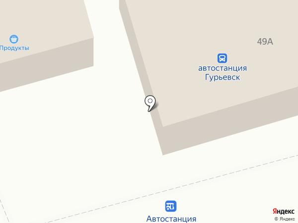 Кенгу 24 на карте Гурьевска