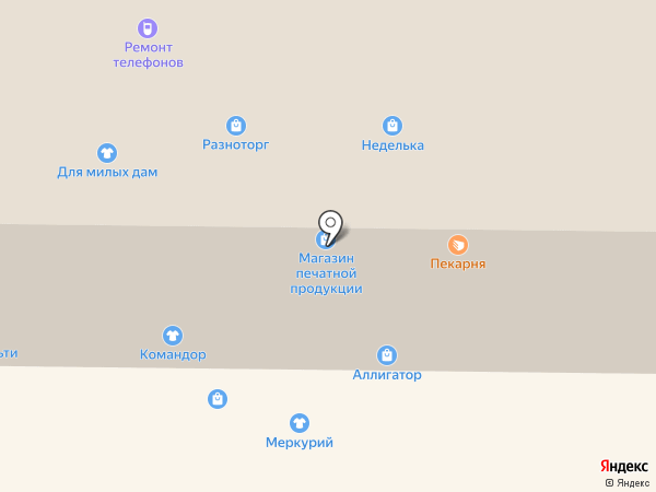 Всё за пол цены на карте Горно-Алтайска
