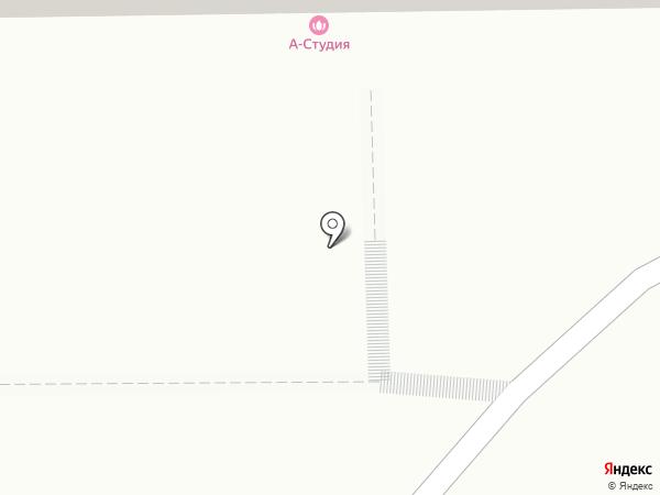 Красивые питомцы на карте Кемерово