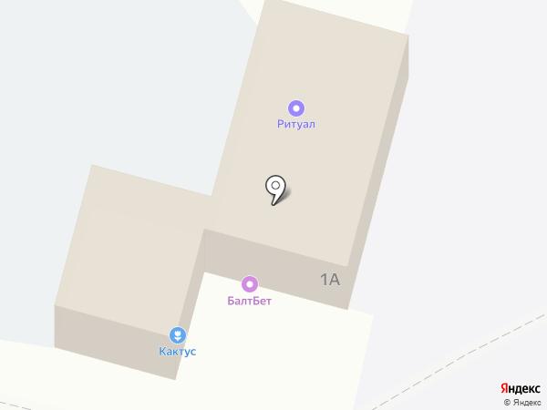 Кактус на карте Ленинска-Кузнецкого